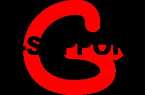 Gサポート